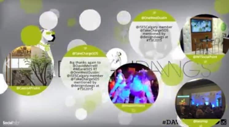 Video social shares inside of a social media wall